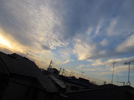 IMG_0603