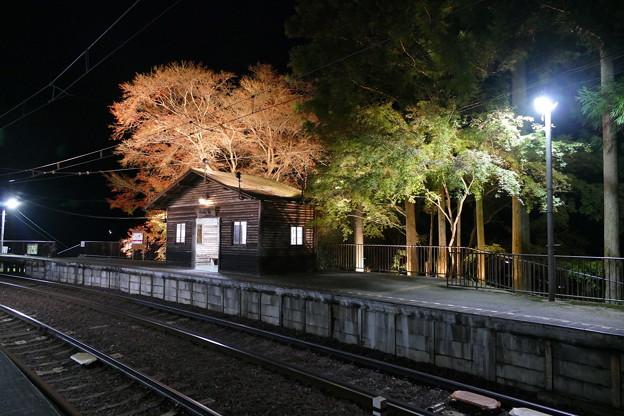 叡山電鉄 二ノ瀬駅 紅葉ライトアップ