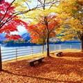 Photos: 山の湖