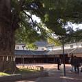 Photos: 金陵の郷。空気感が違う!