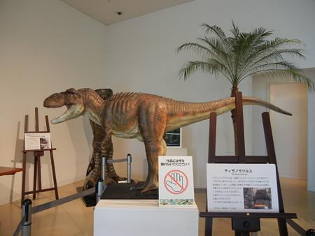 ティラノサウルス君