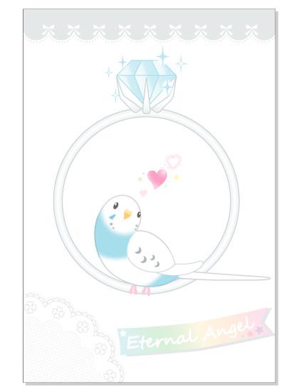 095ポストカード/Eternal ring/セキセイ・パイドブルー