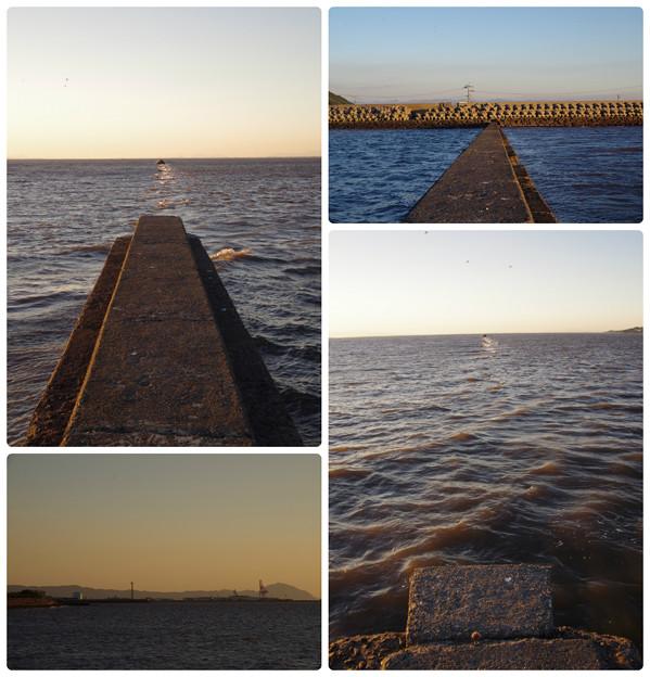 海の中道を行く2