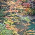 水殿ダム湖4