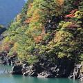 水殿ダム湖 7