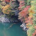 水殿ダム湖 8