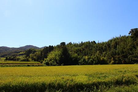 淡河城(おうごじょう)