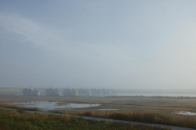 可動堰の朝霧