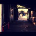 写真: 八丁味噌工場.......