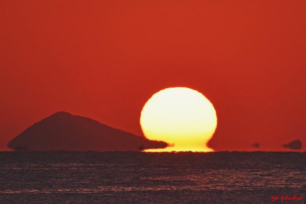写真: 神島にいたパックマン