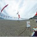 写真: 鯉のぼり 故郷の浜を 筆で撮る