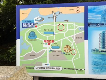 平日の葛西臨海公園6