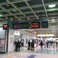写真: 新幹線コンコース [JR 新潟駅]