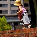 Photos: 煉瓦の美学 急げ