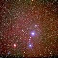 写真: エンゼルフィッシュ星雲