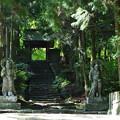 写真: 仁王像と山門