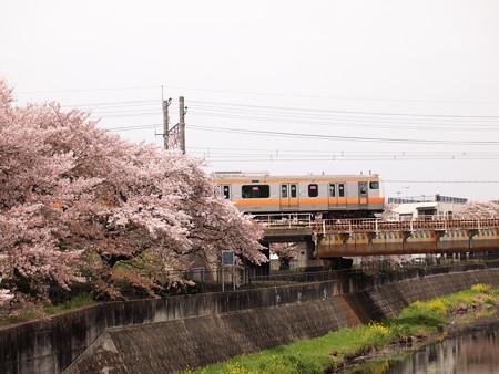 E233系 中央本線日野~立川04