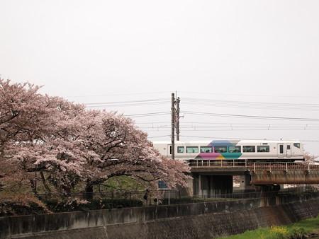 E257系特急あずさ 中央本線日野~立川