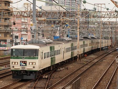 185系特急踊り子 東海道本線川崎~横浜