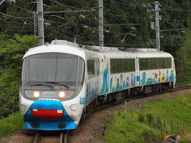 富士急8000系フジサン特急  上大月~田野倉02