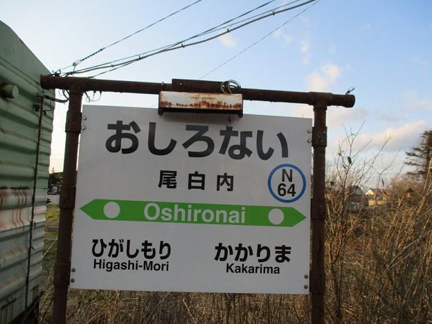 Photos: 13kaka_14oshi_30
