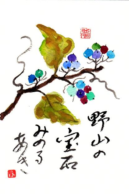 写真: 秋色の野葡萄 by ふうさん