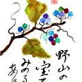 秋色の野葡萄 by ふうさん