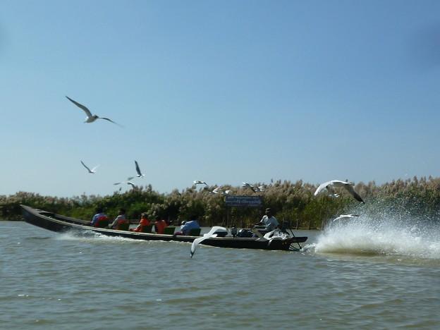 インレー湖の観光客のボート