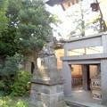 世田谷線:上町駅界隈_天祖神社-02社殿・狛犬b
