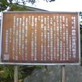 線松原駅~京王線桜上水駅界隈:密蔵院-11_INFO