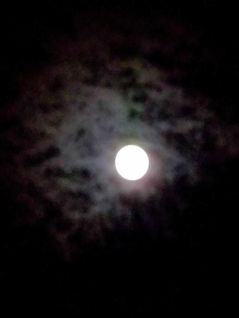 フルムーン_2015.09.28.-02