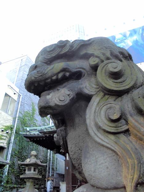 品川駅高輪口界隈_高山(稲荷)神社-06狛犬a(阿)