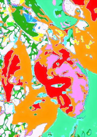 イメージ_文化の日-01