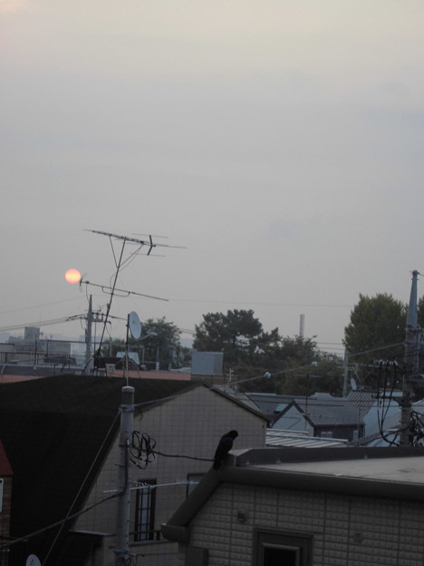夜明け_赤い太陽とカラス_2015.10.21.-01a