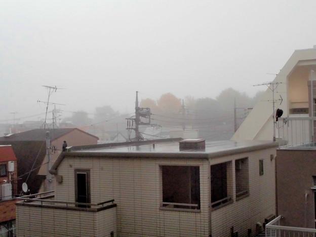 朝焼け→霧雨(カラス2羽)_2015.11.27.-03