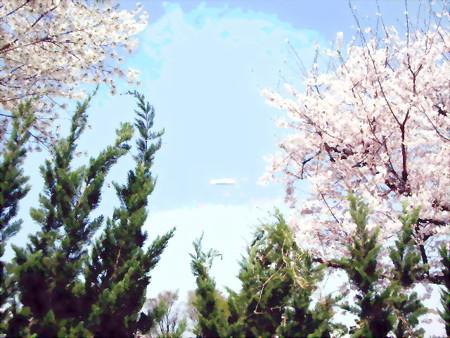 桜と飛行船-02a
