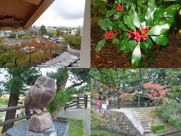 阿賀野川新発田城庭