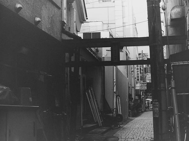 TORII GATE IN JIYUGAOKA
