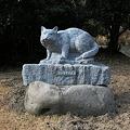 2月19日〜22日対馬・毘沙ノ鼻訪問の旅その4