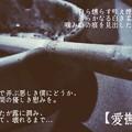 Photos: 【愛撫】