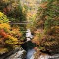 秋景色:みたらい渓谷20
