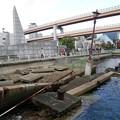 写真: 神戸港震災メモリアルパーク04