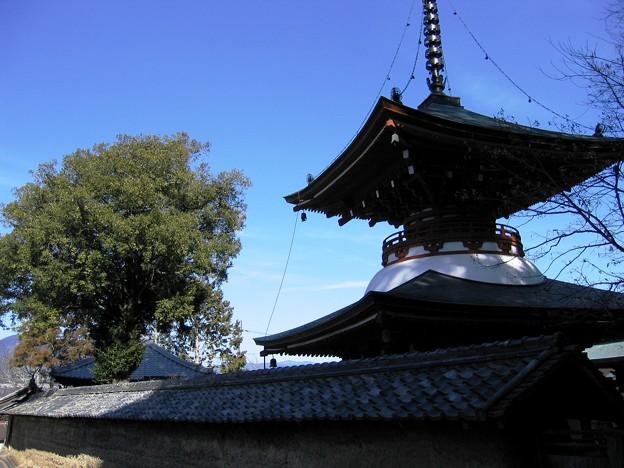 Photos: 慈尊院09