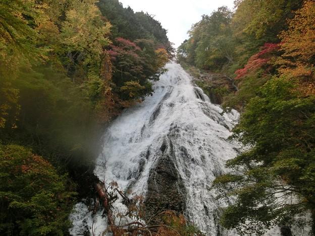 娘の作品^^ 日光修学旅行~紅葉の湯の滝♪