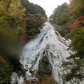 Photos: 娘の作品^^ 日光修学旅行~紅葉の湯の滝♪