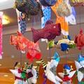 Photos: 吊るし鯉幟~サンバレー那須