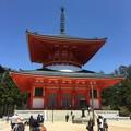 Photos: 高野山・壇上伽藍