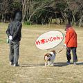 Photos: 2寒い