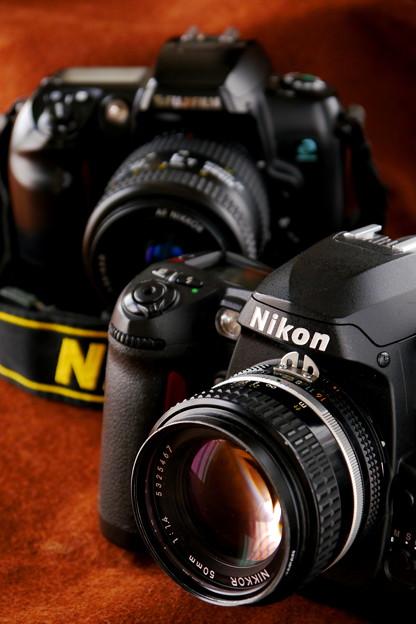 Nikon D100 (2)