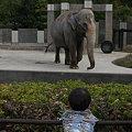☆石川動物園と昆虫館、水族館(能登島)